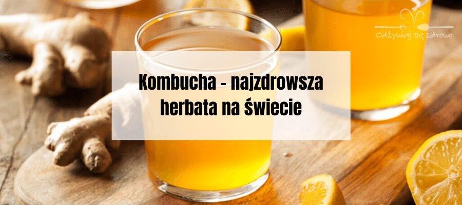 Kombucha - najzdrowsza herbata na świecie - banner